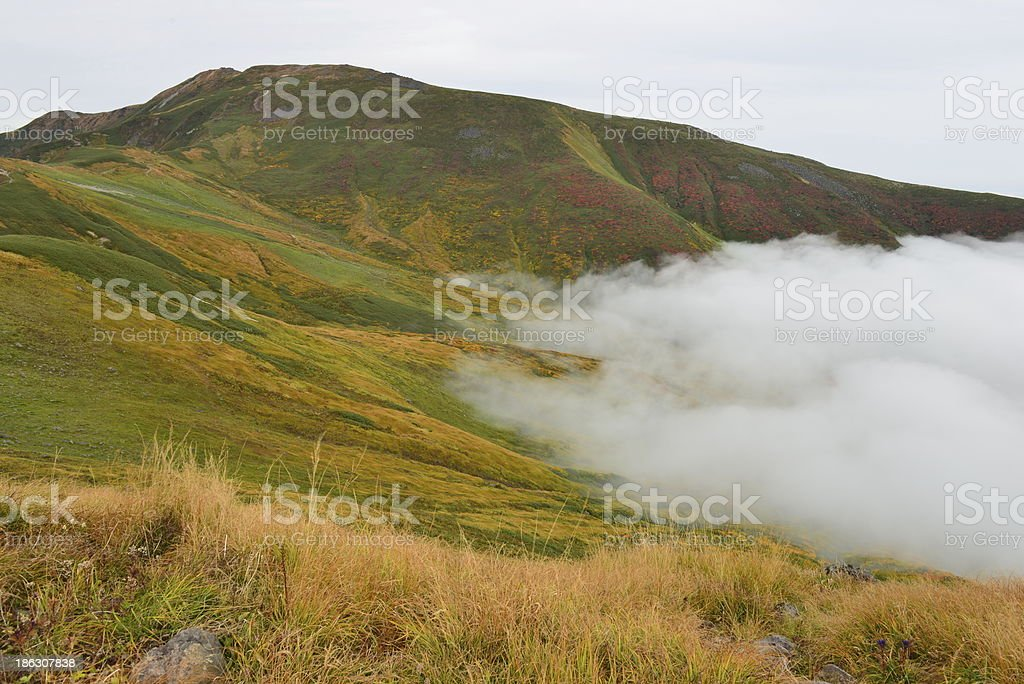 Sea of clouds stock photo