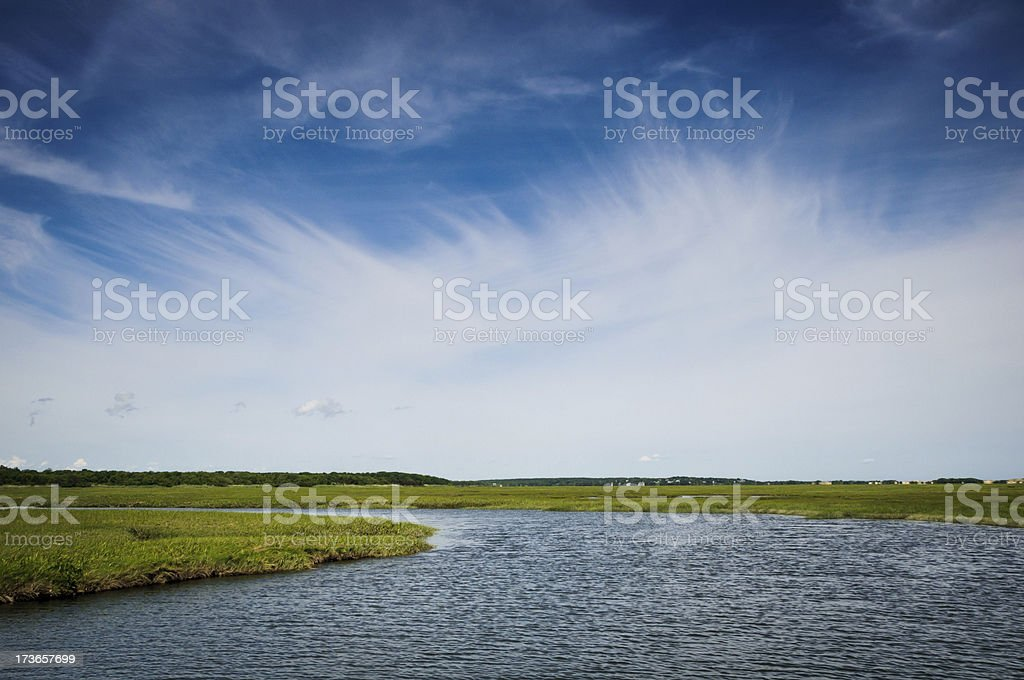 Sea of Grass royalty-free stock photo