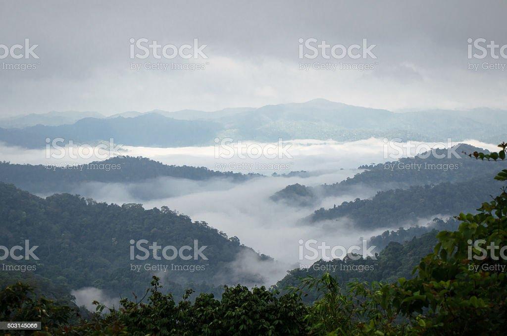 Sea of mist on the mountain. blur background stock photo
