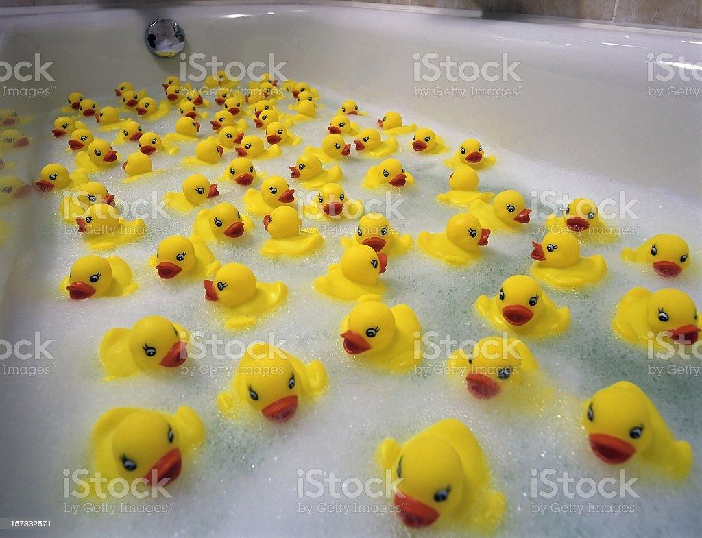Sea of toy ducks stock photo