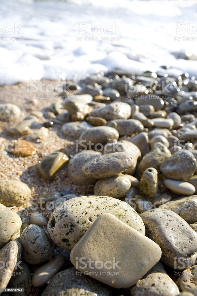 Sea pebble. royalty-free stock photo