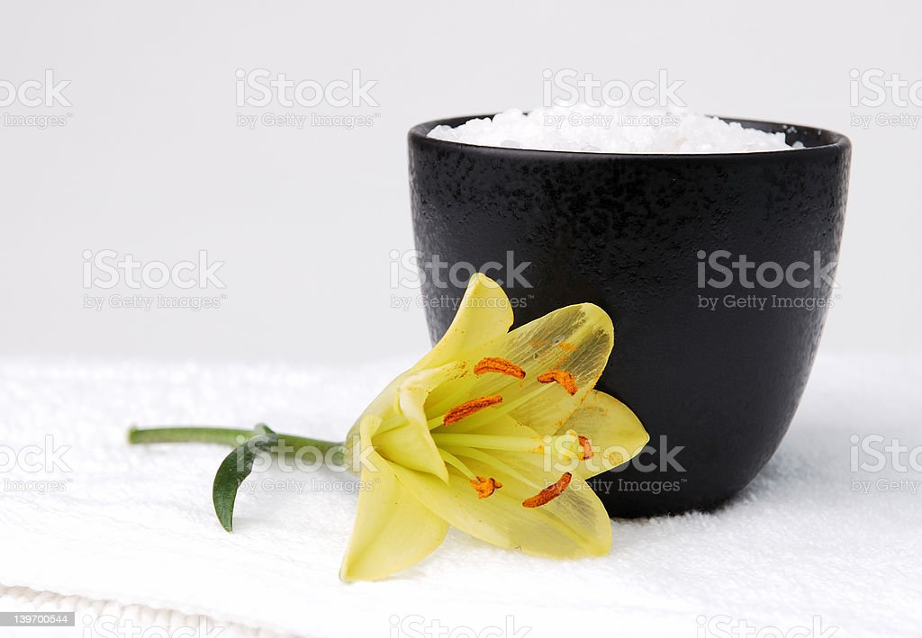 Sea Salt and a Lily royalty-free stock photo