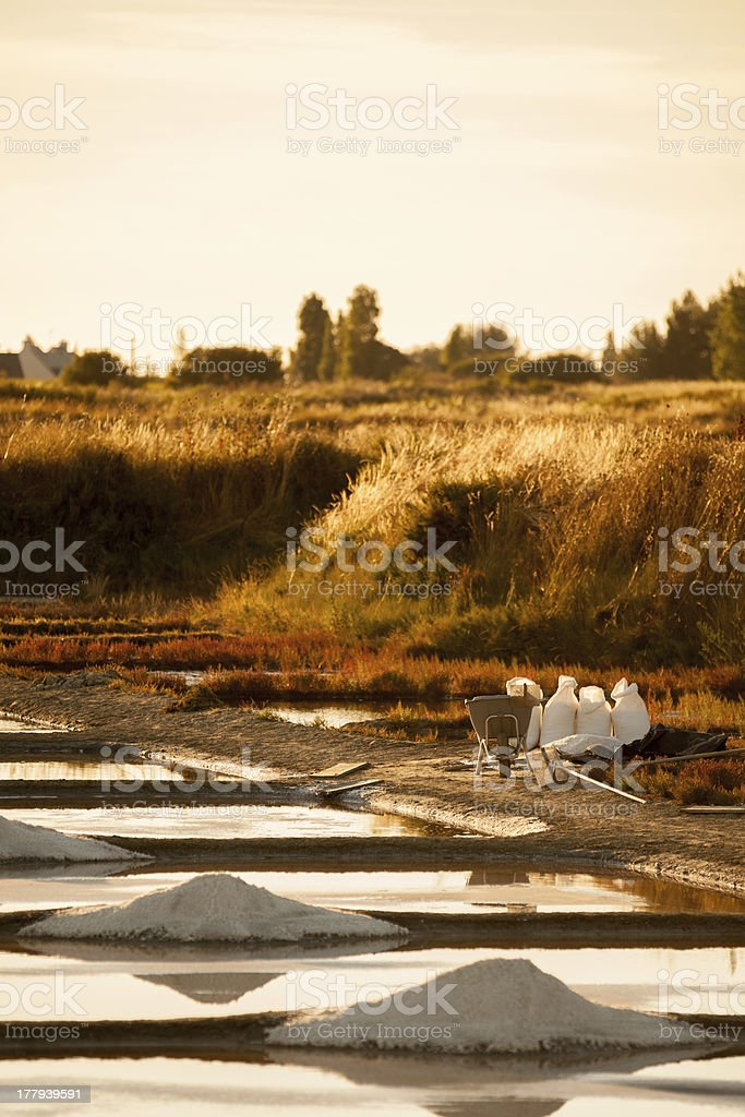 Sea salt extraction in France stock photo