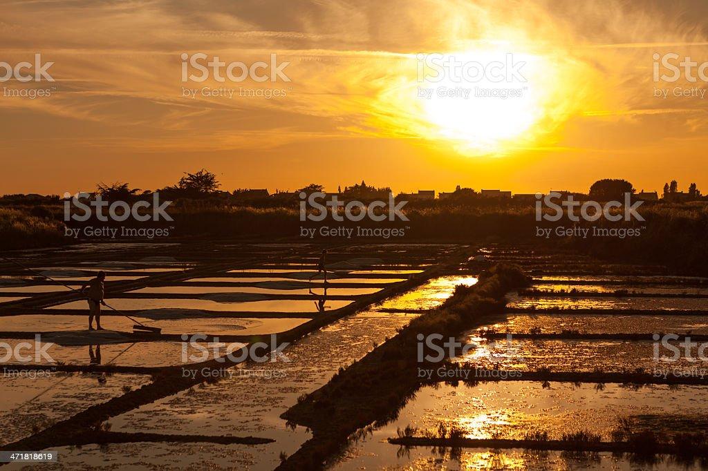 sea salt pans sunset and worker stock photo