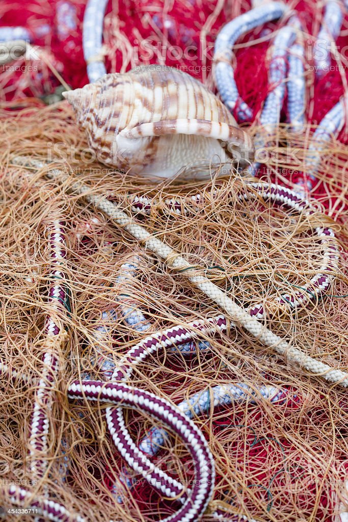Sea Shell on Red Ropes and Nets stock photo