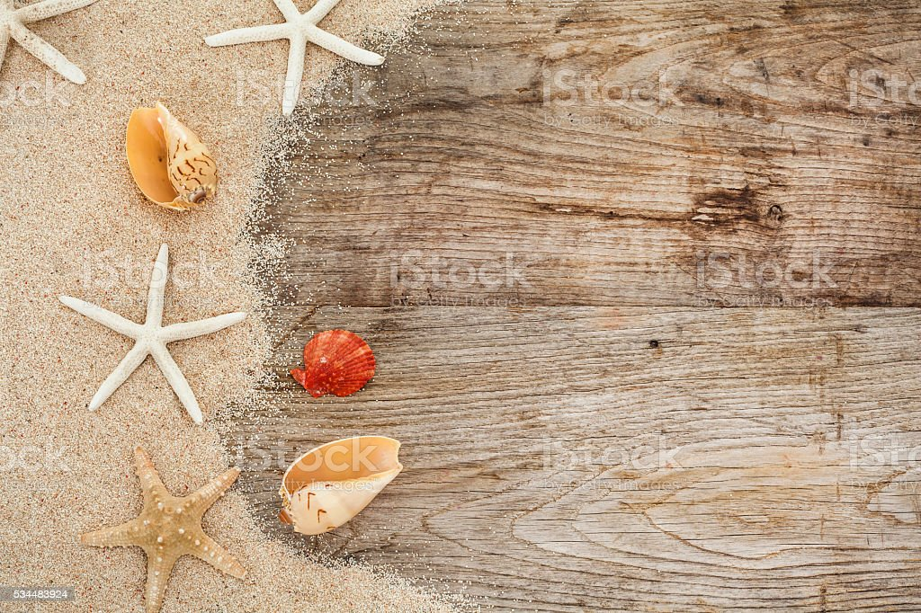 Sea shell on wooden with sand stock photo