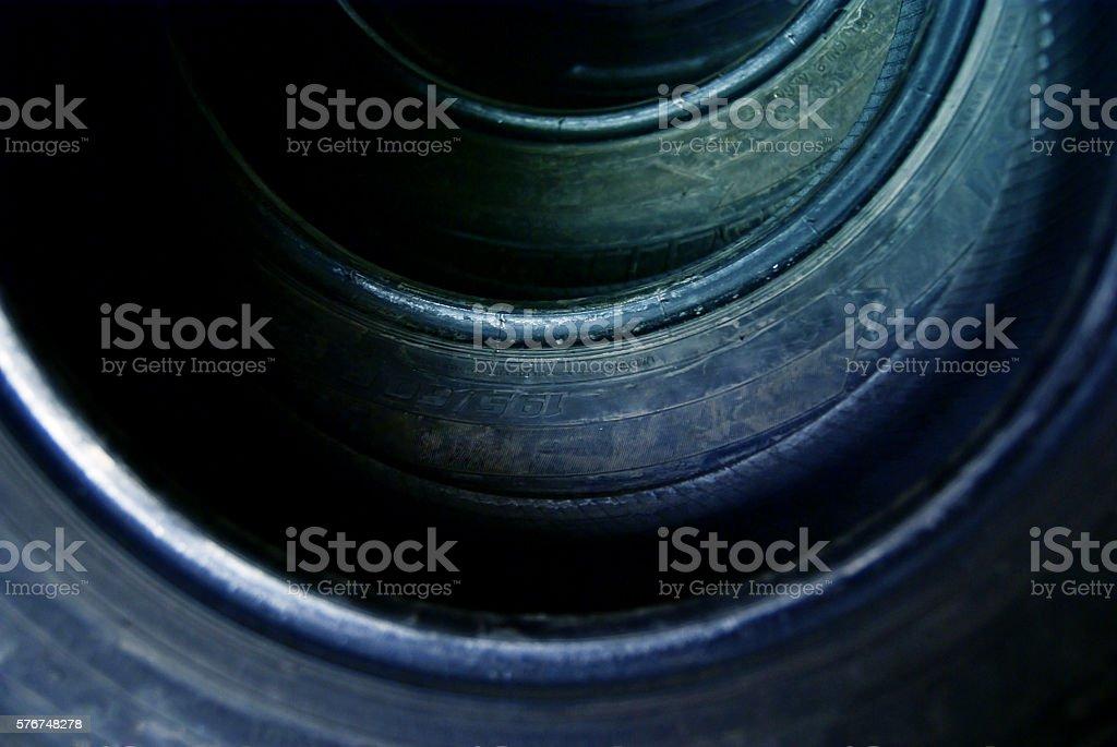 Sea shell, shell stock photo