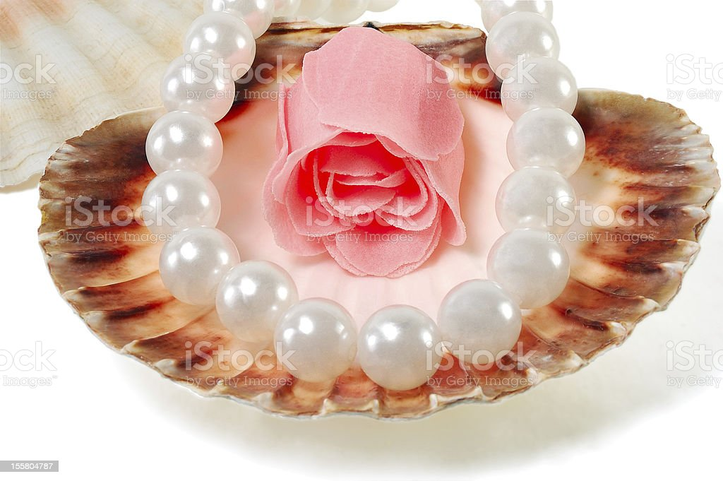 sea shell with pearls and a rose royalty-free stock photo