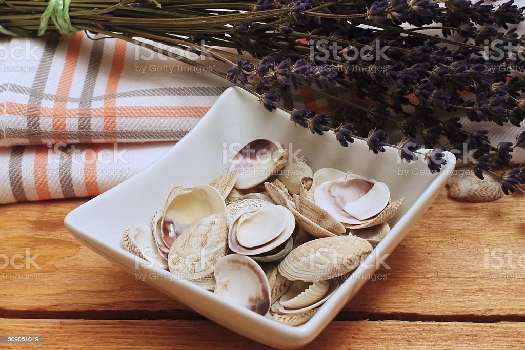 Sea shells and levander stock photo