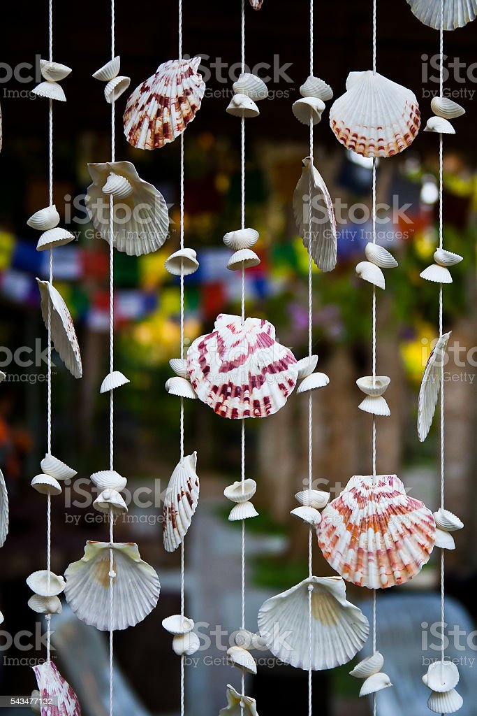 Sea shells mobile stock photo