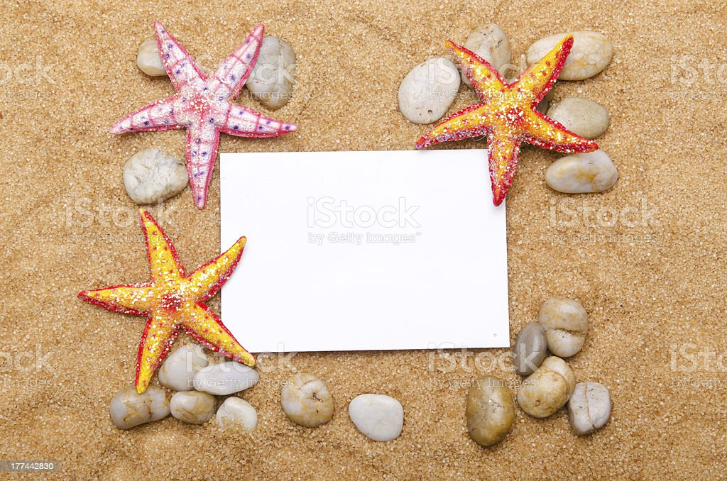 Sea stars isolated on the white stock photo