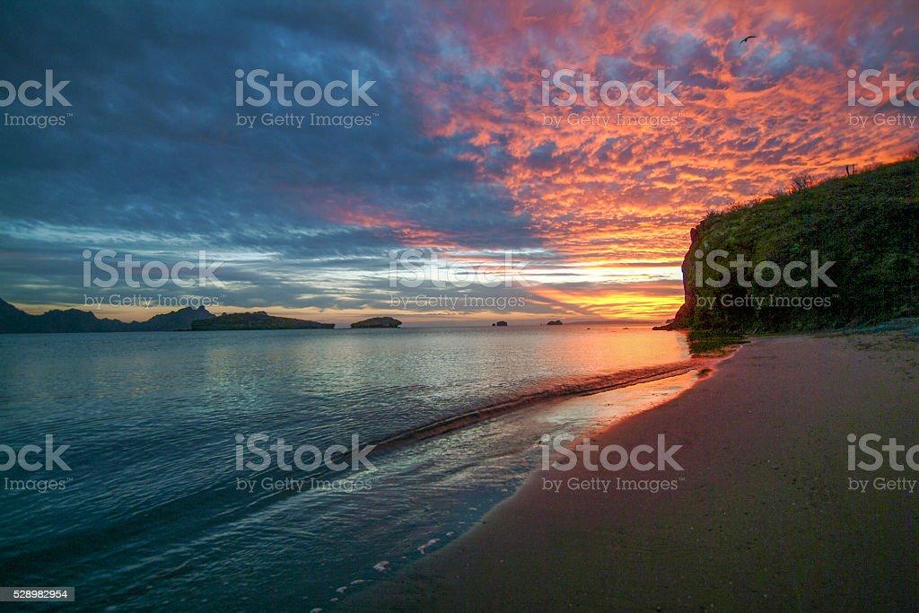 Sea sunrise stock photo