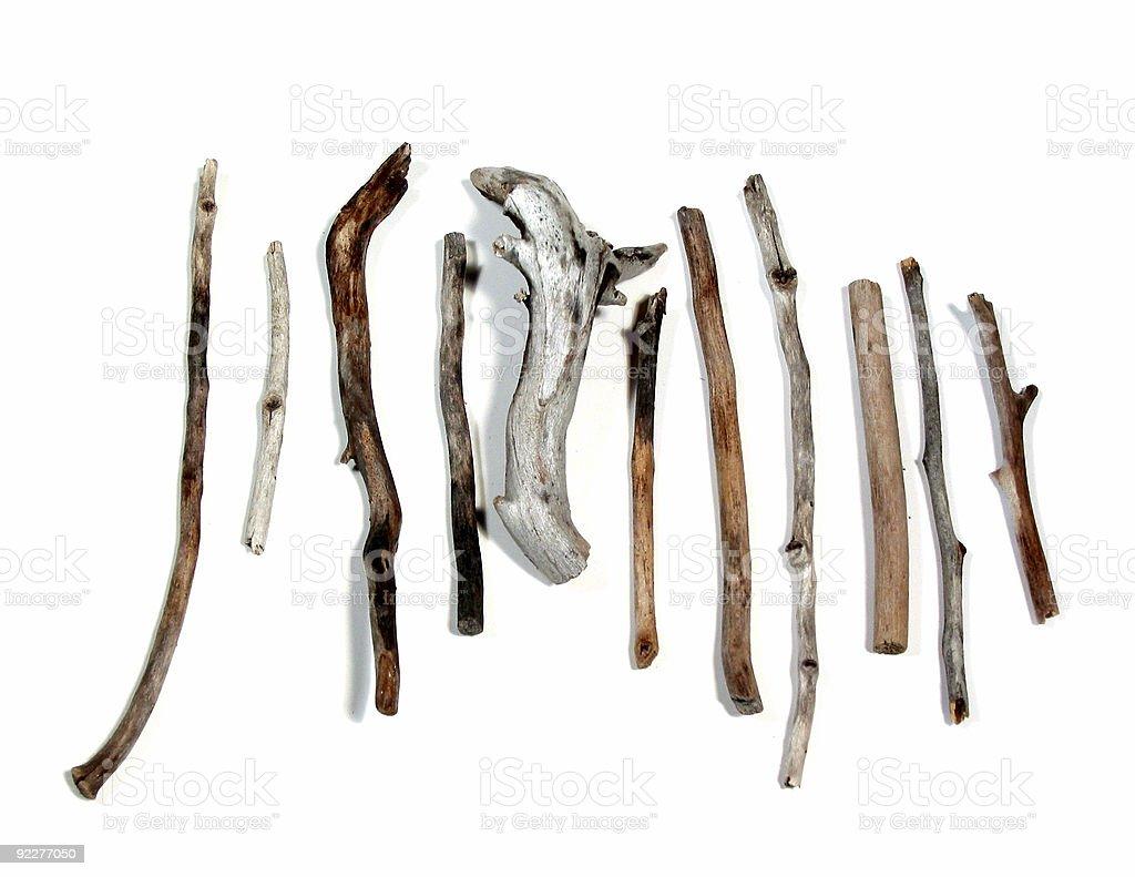 Sea twigs royalty-free stock photo