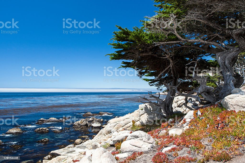 Sea View at 17 Mile Drive in Big Sur California royalty-free stock photo