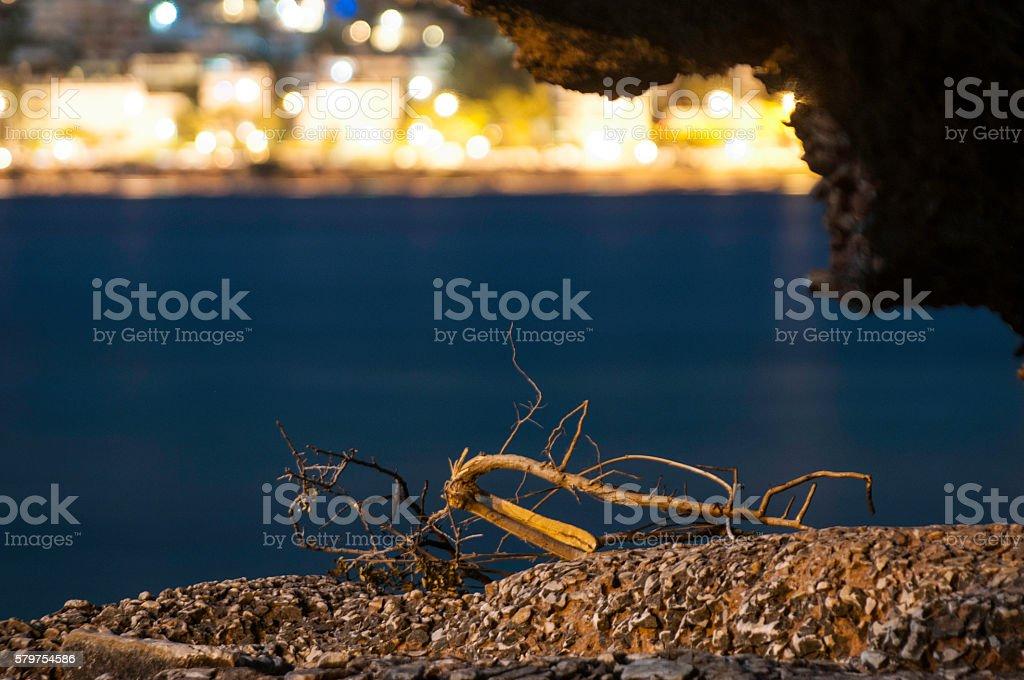 Sea view at night stock photo