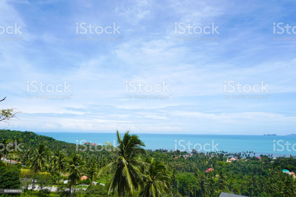Sea view from hill stock photo