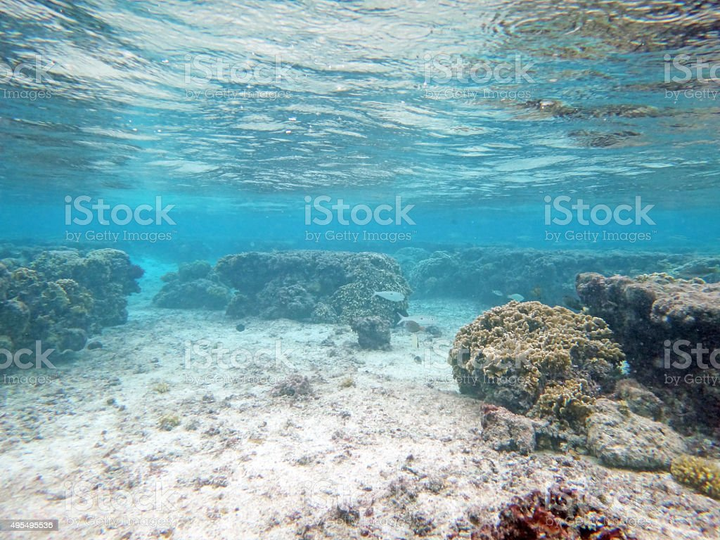 Seabed and water surface stock photo