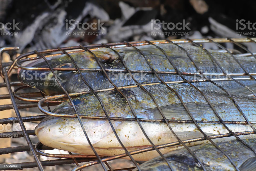 Seabream ready for barbeque on charcoal stock photo