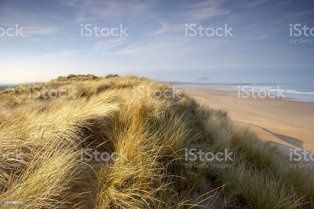 Seabreeze on the sand dunes along the shore stock photo
