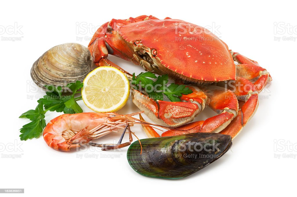 Seafood assortment stock photo
