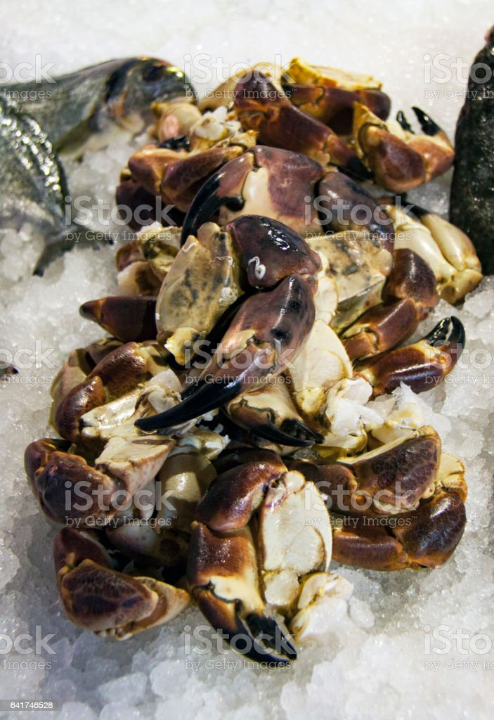 Seafood At Fish Market in Italy stock photo