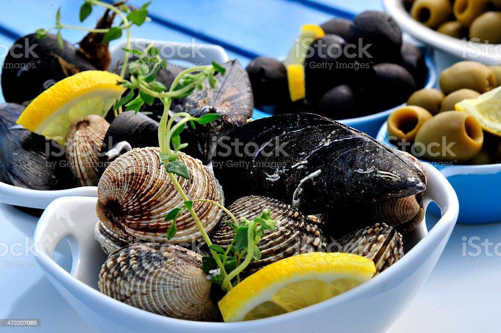 해산물 조개 royalty-free 스톡 사진