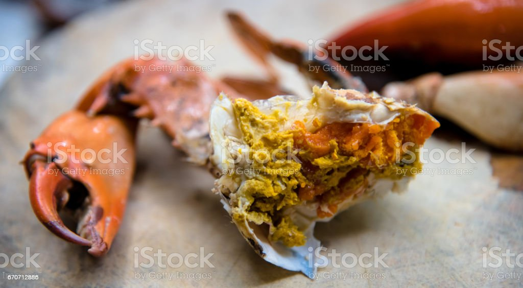 Seafood, Crab with eggs stock photo