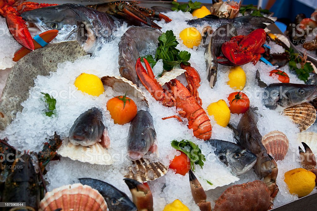 Seafood display on ice royalty-free stock photo