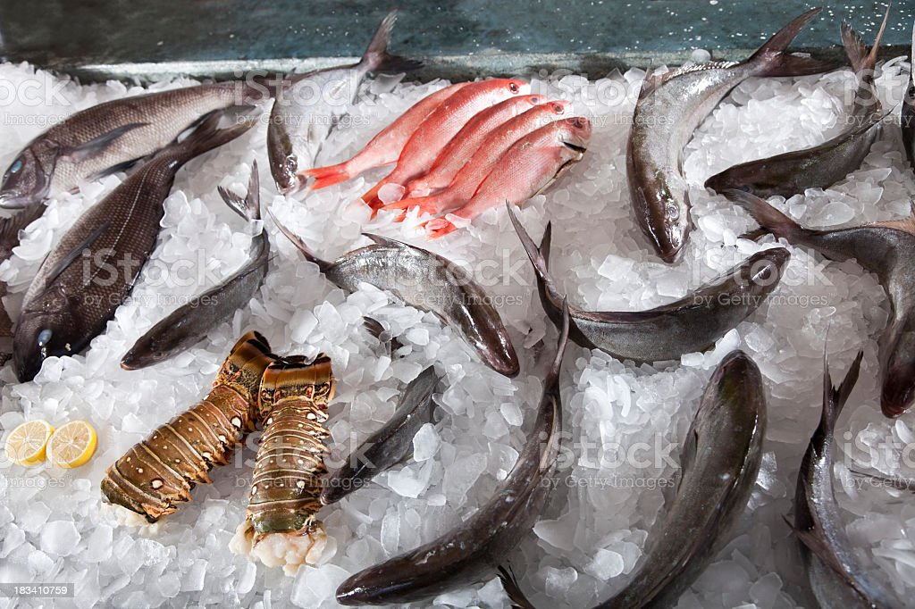 Seafood in display case of fish market stock photo