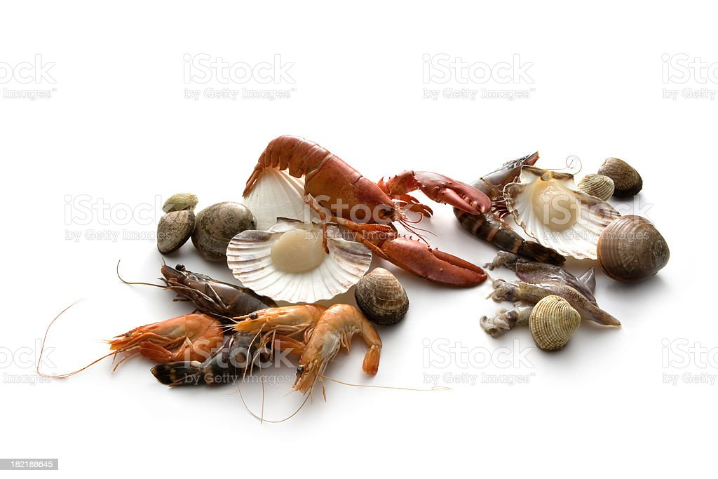 Seafood: Lobster, Prawn, Shrimp and Shellfish royalty-free stock photo