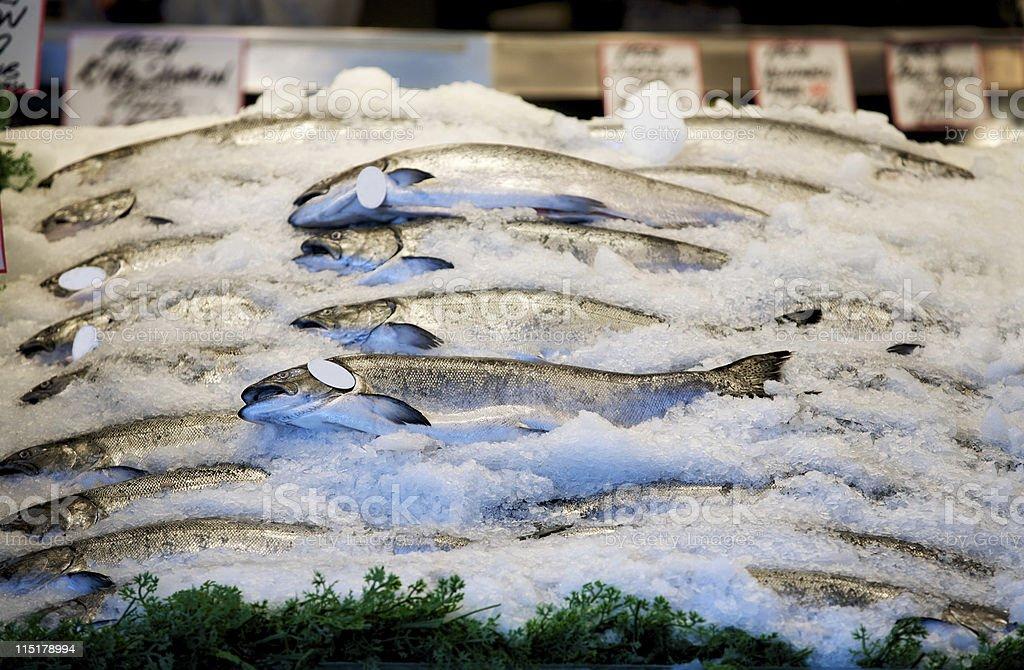 seafood market salmon stock photo