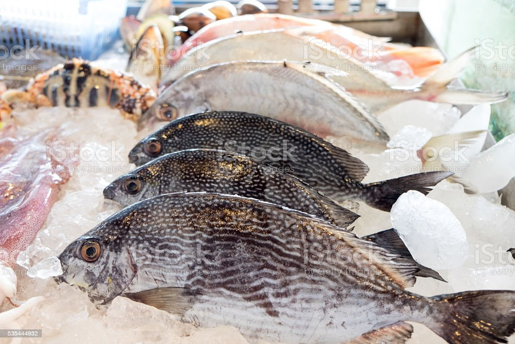 Seafood on ice at the fish market (fresh) stock photo
