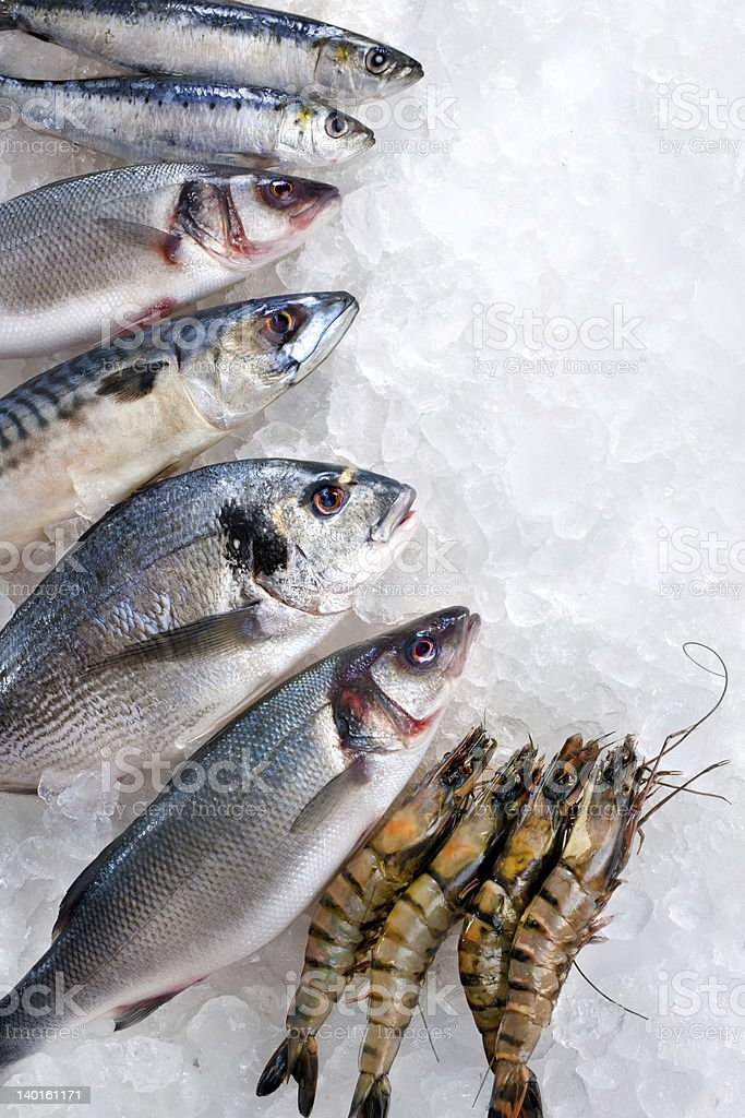 Seafood on ice royalty-free stock photo
