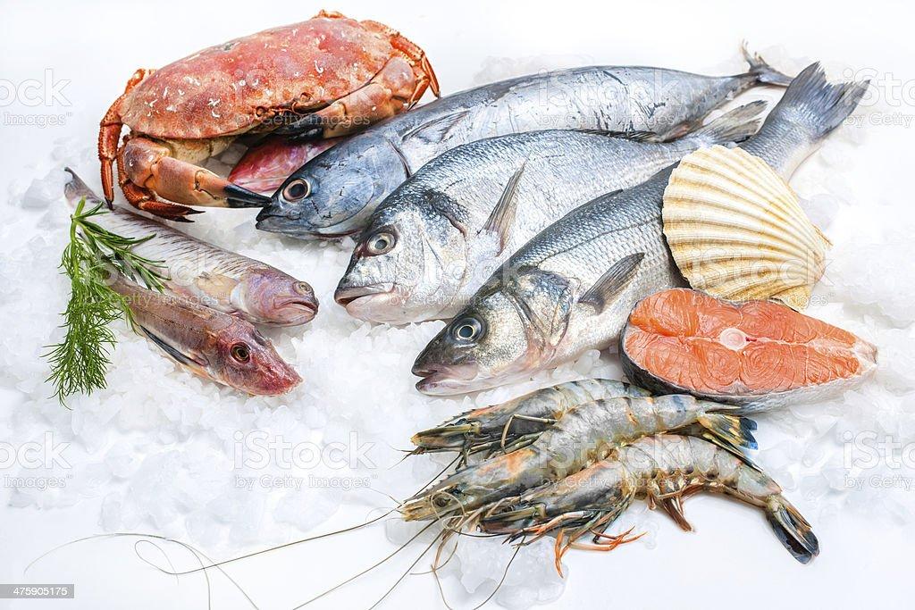 Seafood on ice stock photo