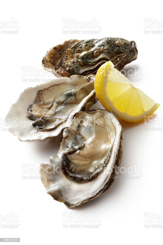 Seafood: Oyster and Lemon Isolated on White Background stock photo