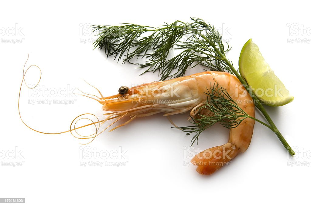 Seafood: Shrimp royalty-free stock photo