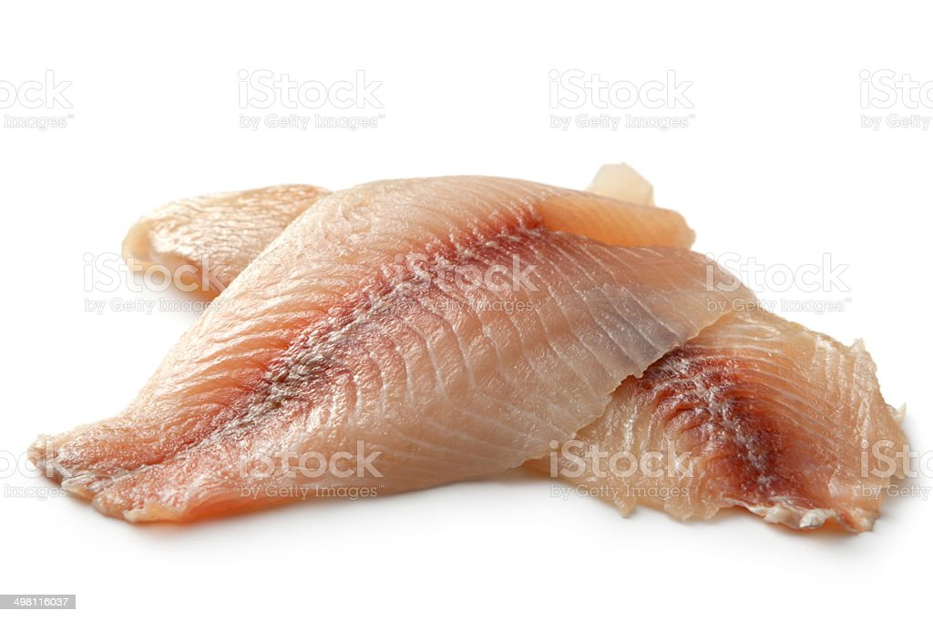 Seafood: Tilapia Fillet Isolated on White Background stock photo