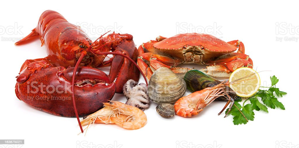 Seafood variety stock photo