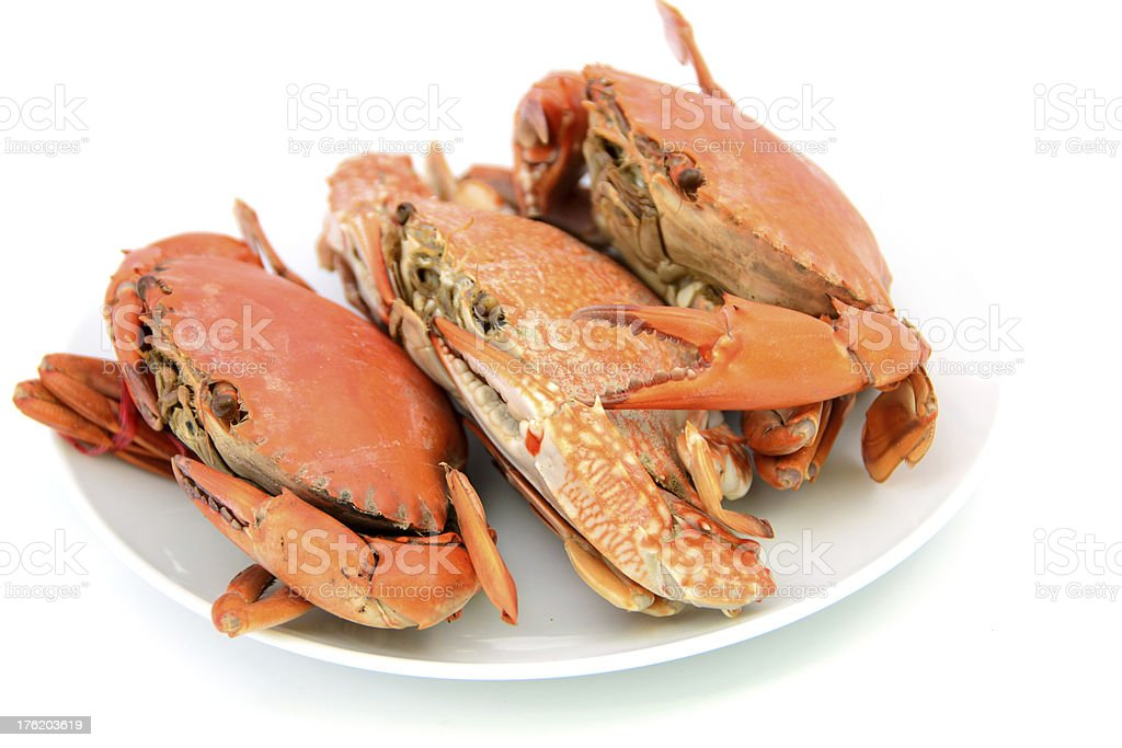 seafood,boiled crabs prepared royalty-free stock photo