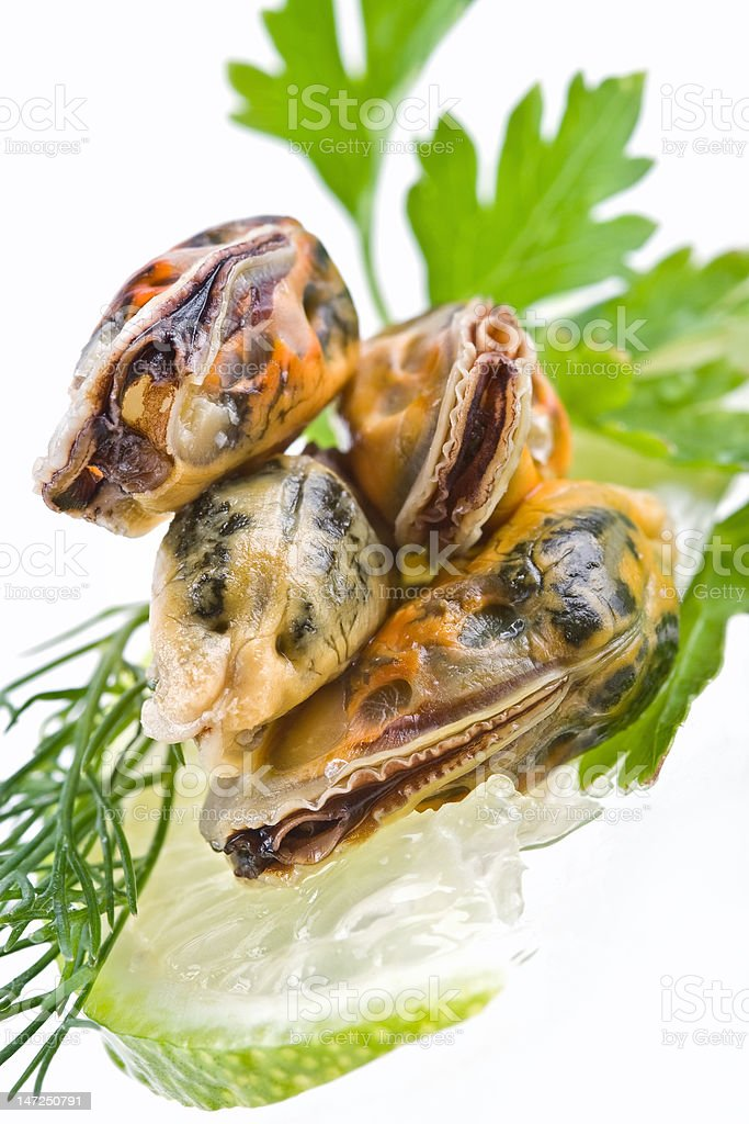 Seafood-mussels royalty-free stock photo