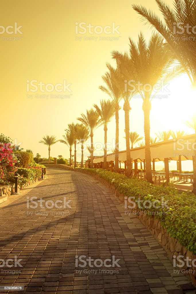Seafront in Egypt stock photo