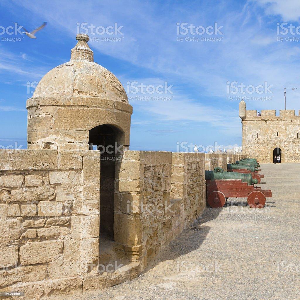 Seagull; Essaouira - Magador, Marrakech, Morocco. stock photo