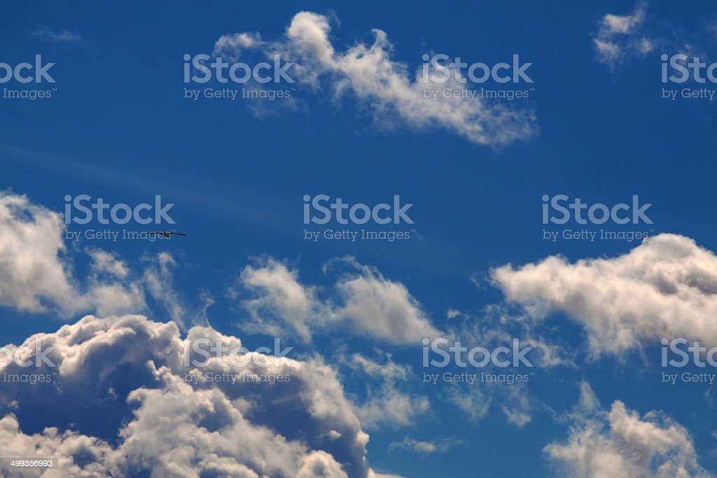 Seagull flying in the sky royalty-free stock photo
