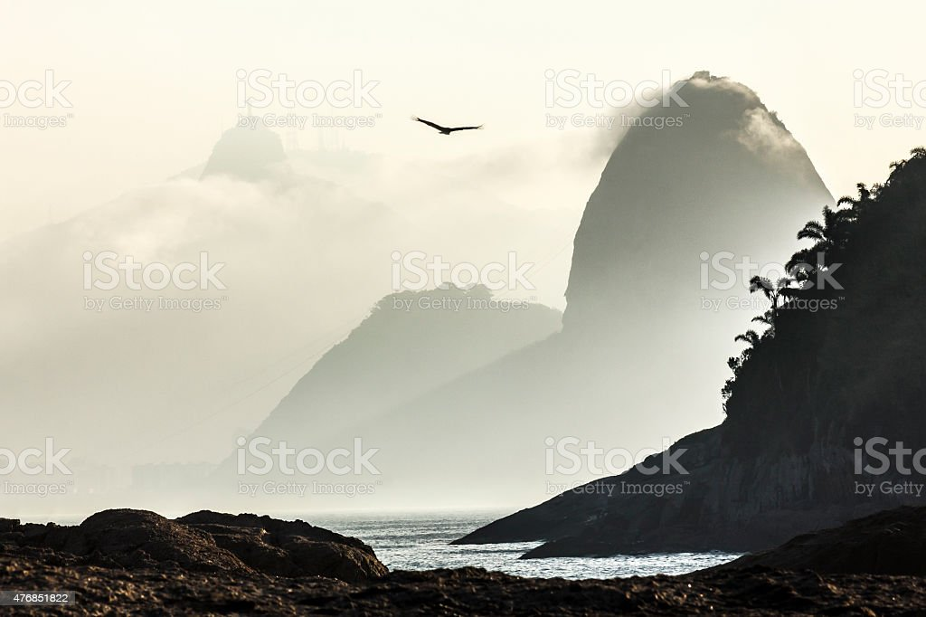 Seagull flying over Guanabara Bay with Sugar Loaf in Background stock photo