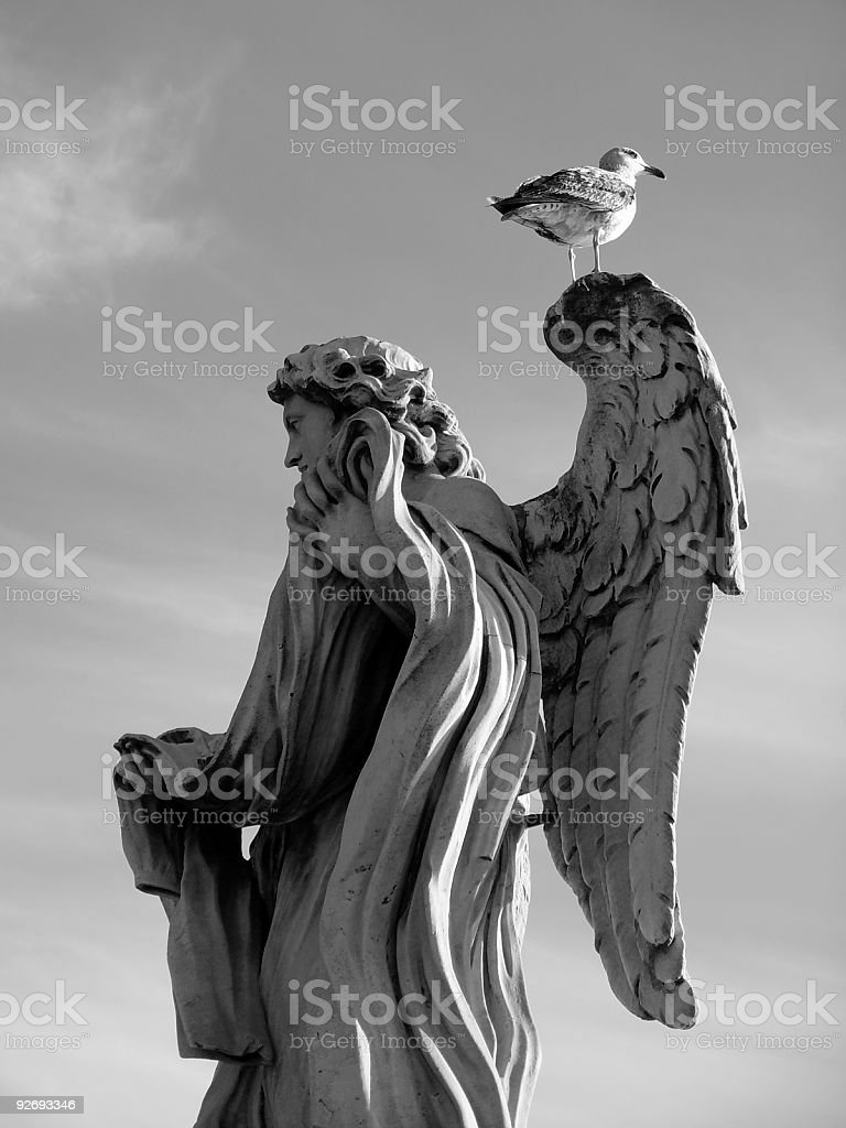 Seagull on a statue royalty-free stock photo