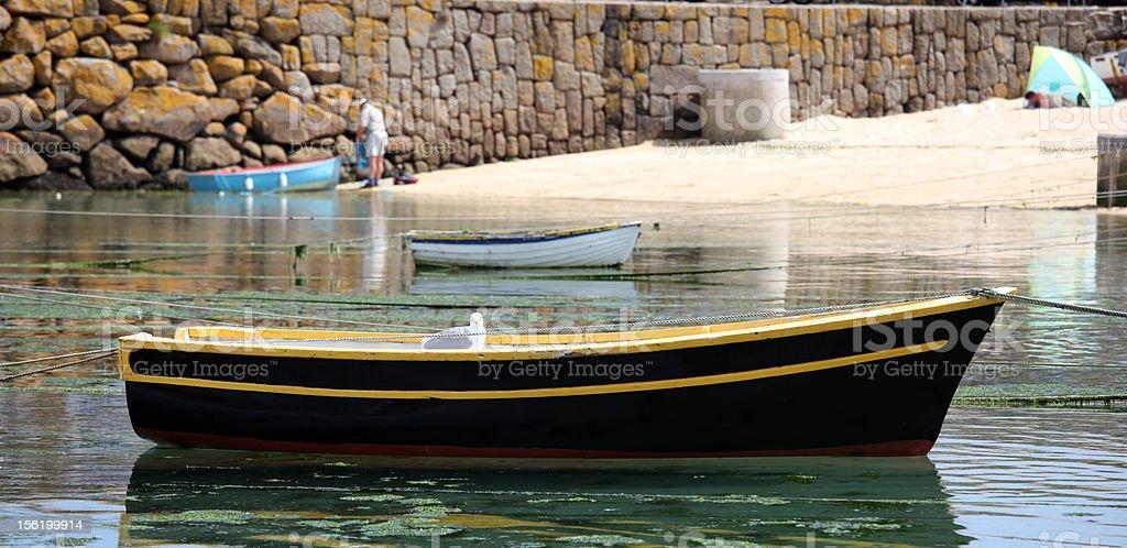 Seagull オンボート、Mousehole 、コーンウォール(英国) ロイヤリティフリーストックフォト