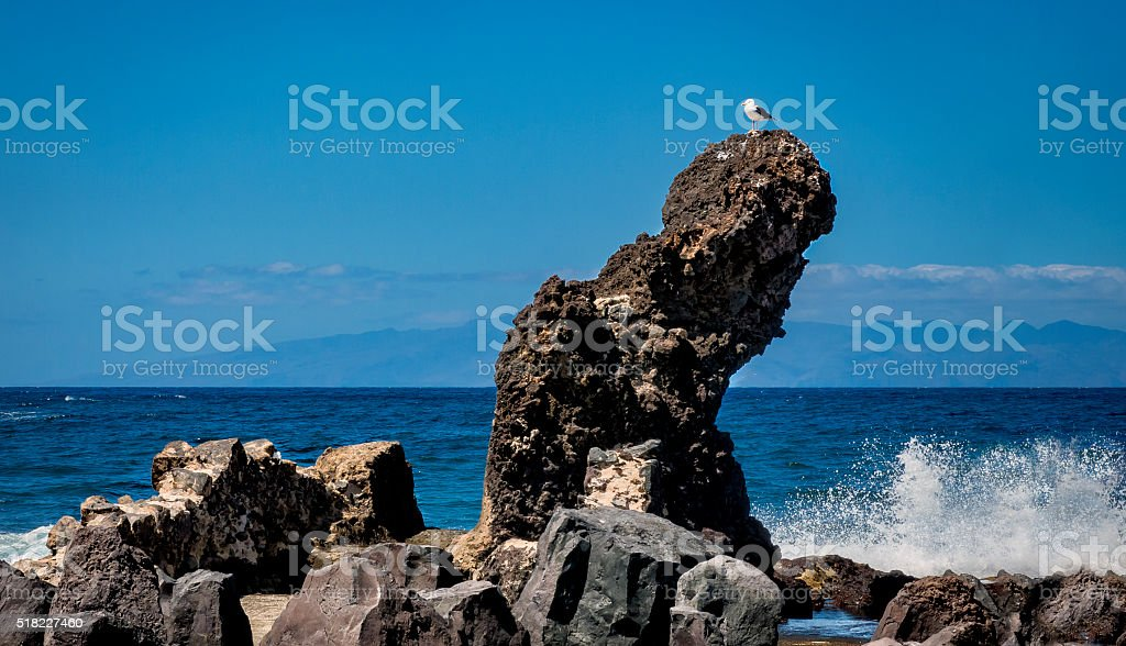 Seagull on the top of a rock in dramatic seascape stock photo
