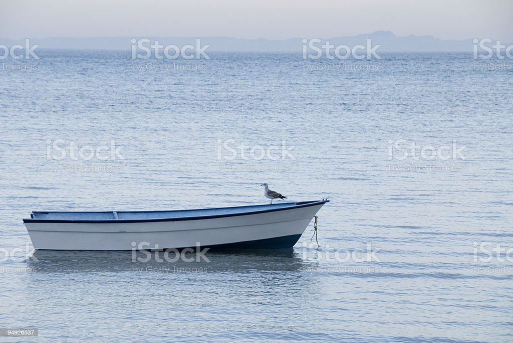 Seagull standing on empty boat in tranquil water stock photo