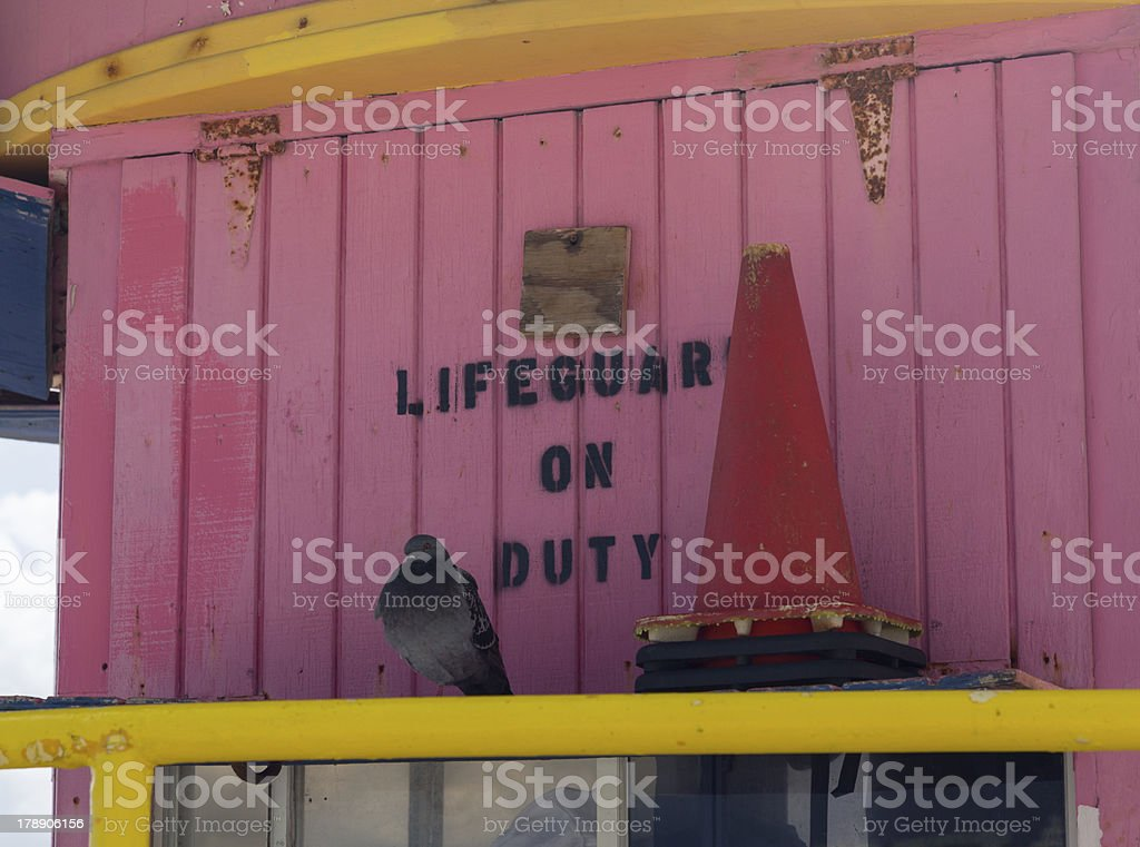 Seagull stands on deserted Lifeguard station royalty-free stock photo