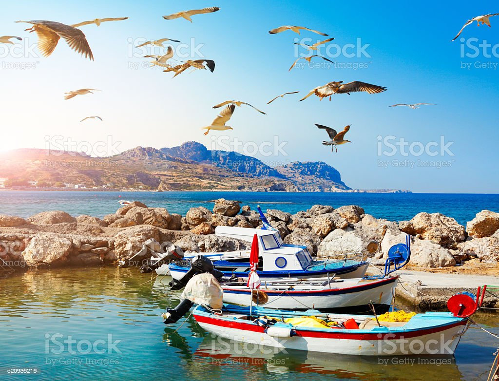 Seagulls and fishing boats at Rhodes in Greece stock photo